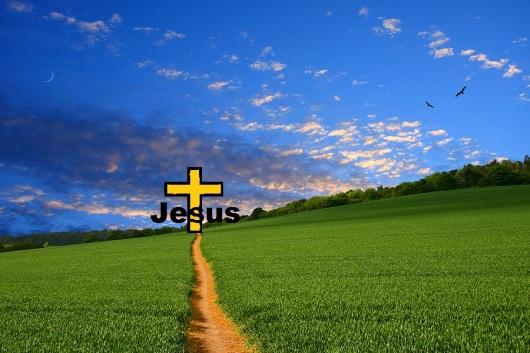 Straight-Narrow-Path
