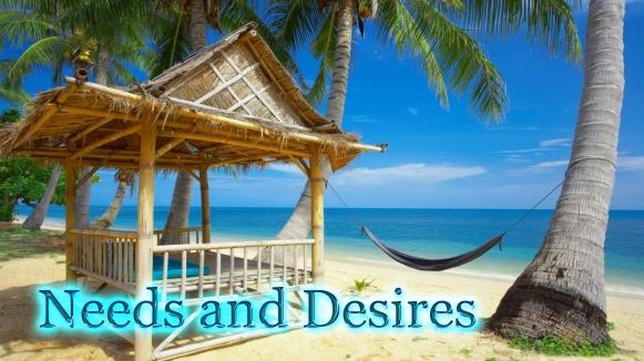 Needs and Desires