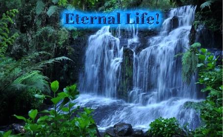 eternal heaven copy
