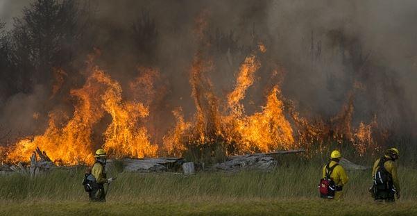 Wildfire Soda Idaho 16 August 2015